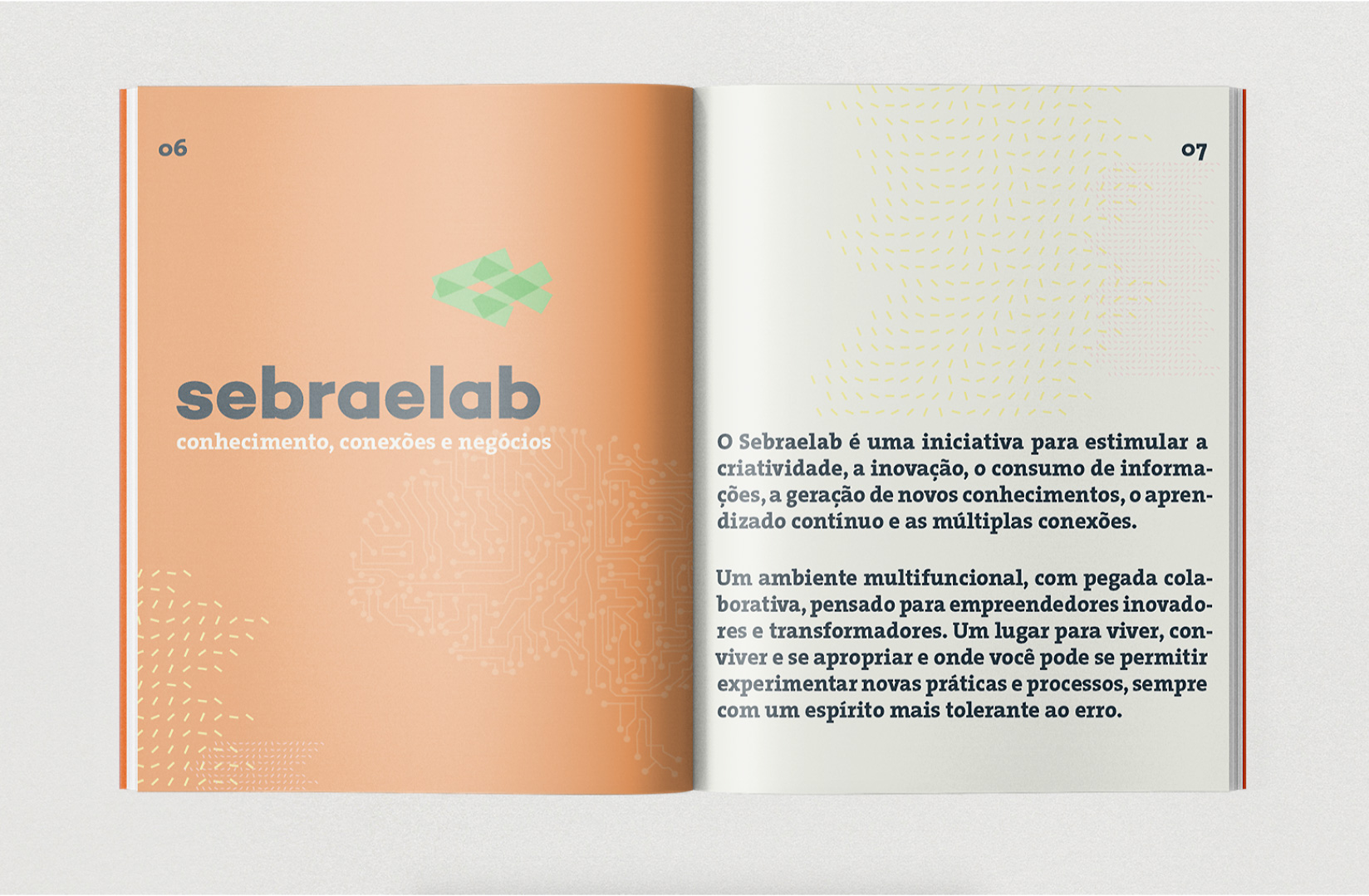 SEBRAELAB – Prototipe